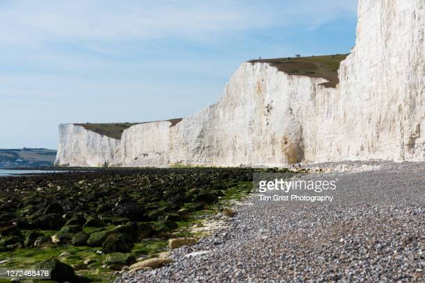 the seven sisters cliffs and beach at low tide - cape stock pictures, royalty-free photos & images