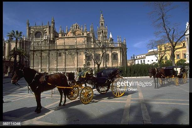 The Seville Cathedral and its bell tower La Giralda dominate the Seville skyline