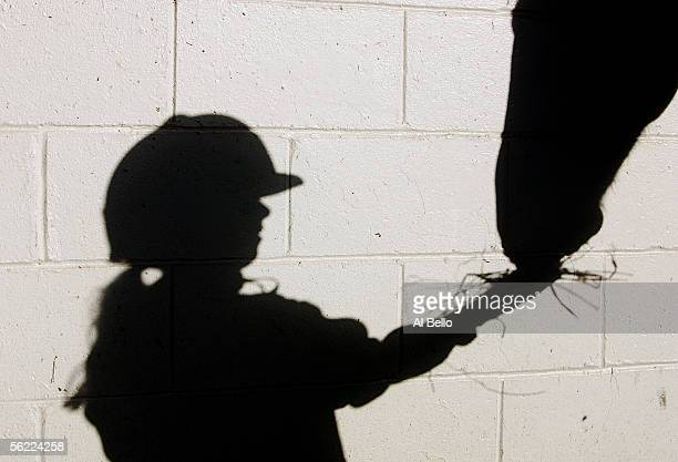 The shadow of Eight year old Nicole Bello feeds hay to a horse prior to her riding lesson at The Thomas School of Horsemanship on October 26 2005 in...