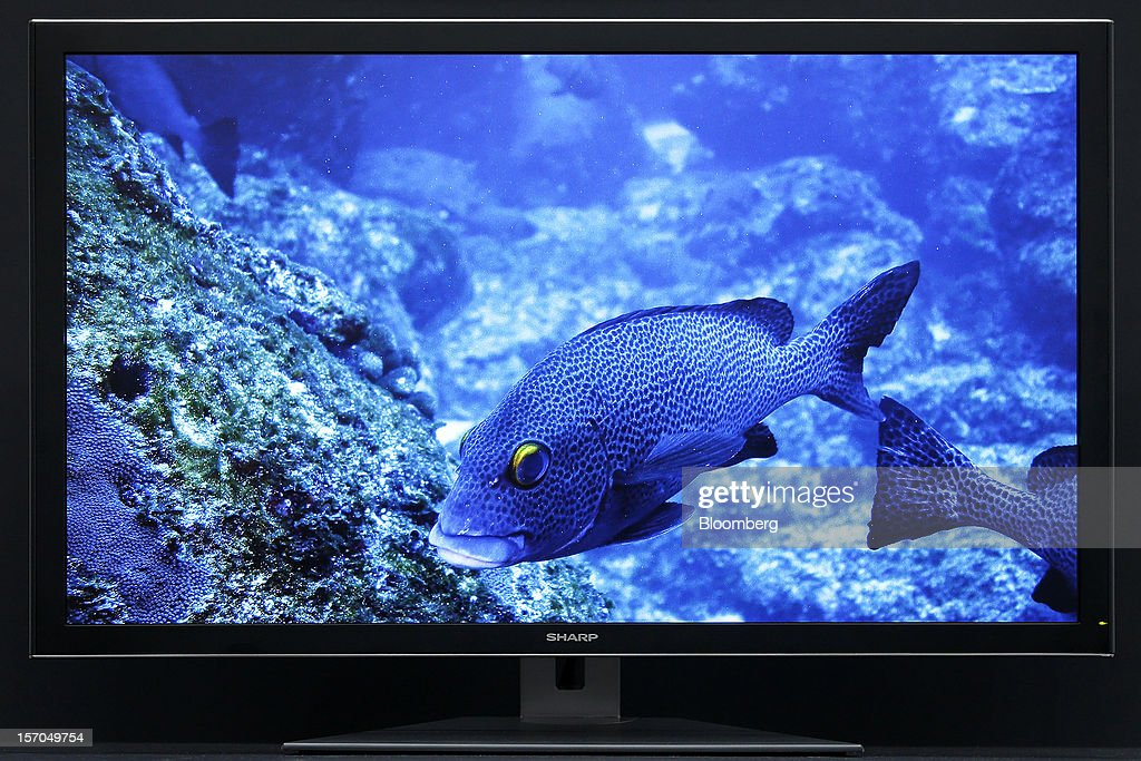 The Sharp Corp. PN-K321, 32-inch 4K2K liquid crystal display (LCD) IGZO monitor is displayed during the unveiling in Tokyo, Japan, on Wednesday, Nov. 28, 2012. Sharp, Japan's largest maker of liquid-crystal displays, has lined up customers for its most advanced panels after saying earlier this year it was struggling to find buyers. Photographer: Kiyoshi Ota/Bloomberg via Getty Images