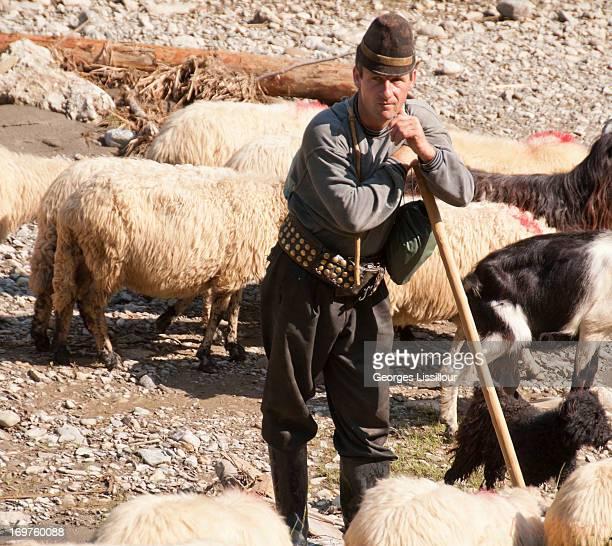 The shepherd maramures Romania