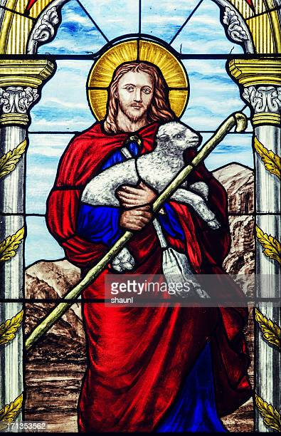 the shepherd - shepherd stock pictures, royalty-free photos & images