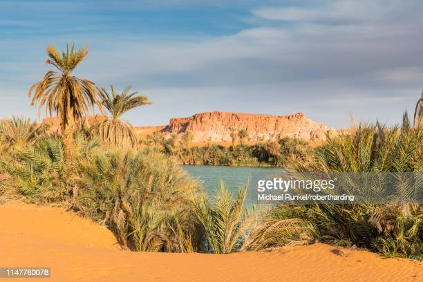 the shore of ounianga kebir part of the ounianga lakes, unesco world heritage site, northern chad, africa - chad stock pictures, royalty-free photos & images