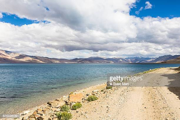 the shore of tso moriri in ladakh - didier marti stock photos and pictures