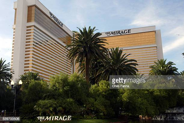 The Siegfried Roy show has entertained multitudes of visitors at the Mirage Hotel Casino over the past thirteen years Roy Horn of Siegfried Roy...