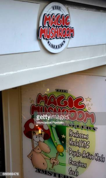 The sign of a shop selling magic mushrooms psychotropic products on sale in Amsterdam Amsterdam 7th December 2016