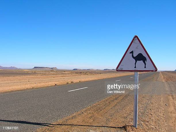 The sign of the camel