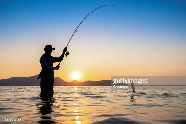 the silhouette fishing man, once of thailand tradition,asia. - fishing stock pictures, royalty-free photos & images