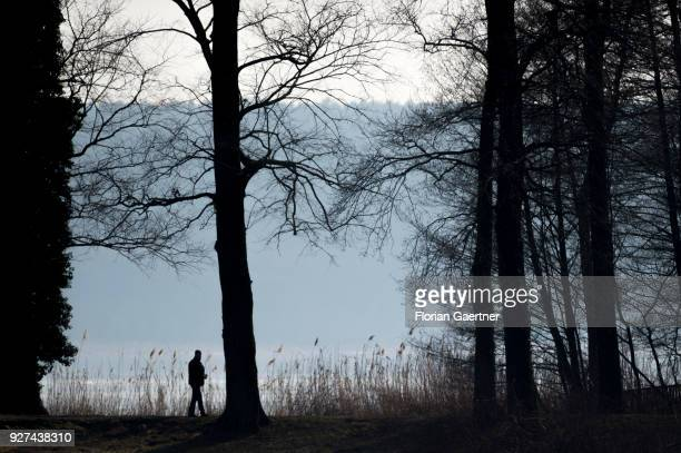 The silhouette of a walking man is pictured near the lake Schwielowsee on March 03 2018 in Petzow Germany