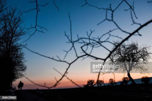 The silhouette of man is seen as he walks after crossing the Macedonian border with other migrants and refugees into Serbia near the village of...