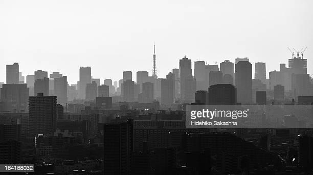 the silhouette of tokyo - モノクロ ストックフォトと画像