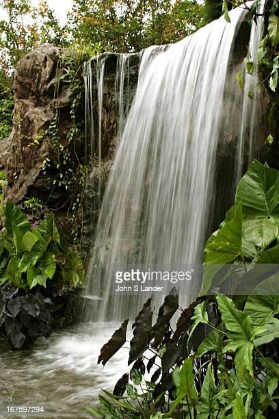 Singapore Botanic Gardens Chute D Eau
