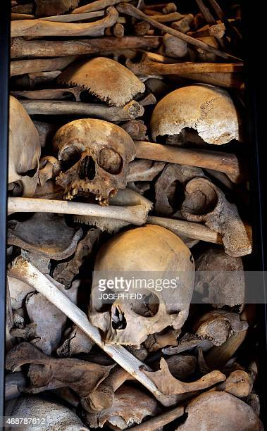 The skeletal remains of more than one hundred and fifty Armenians killed during their exodus from persecutions by the Ottoman government in 1915 are...