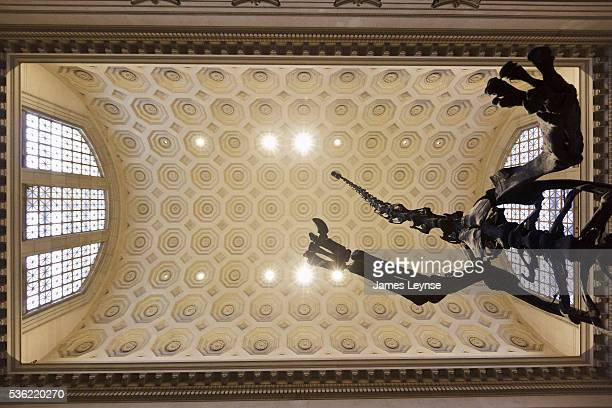 The skeleton of a Barosaurus dinosaur at the American Museum of Natural History After renovations the museum reopened today its display of Barosaurus...