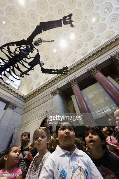 The skeleton of a Barosaurus dinosaur towers above children at the American Museum of Natural History After renovations the museum reopened today its...