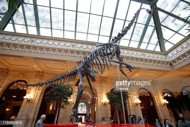 The Skeleton of a close relative of the Diplodocus surnamed Skinny is displayed in the lobby of the Intercontinental Paris Le Grand hotel prior to be...