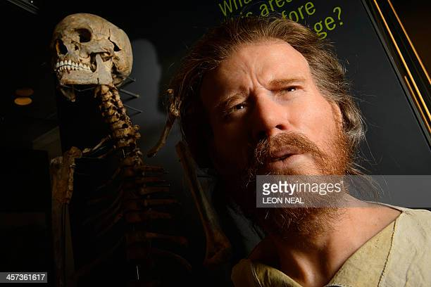 The skeleton of a neolithic man who was buried around 5500 years ago in a long barrow 15 miles from the prehistoric monument of Stonehenge a world...