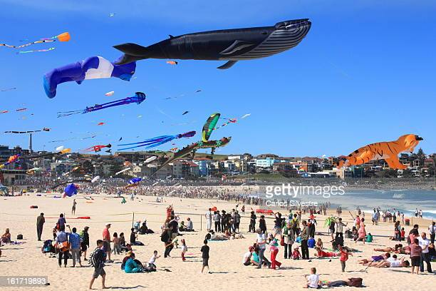CONTENT] The skies above Bondi Beach fill with kites of all colours shapes and sizes during Festival of the Winds Australia's longestrunning...