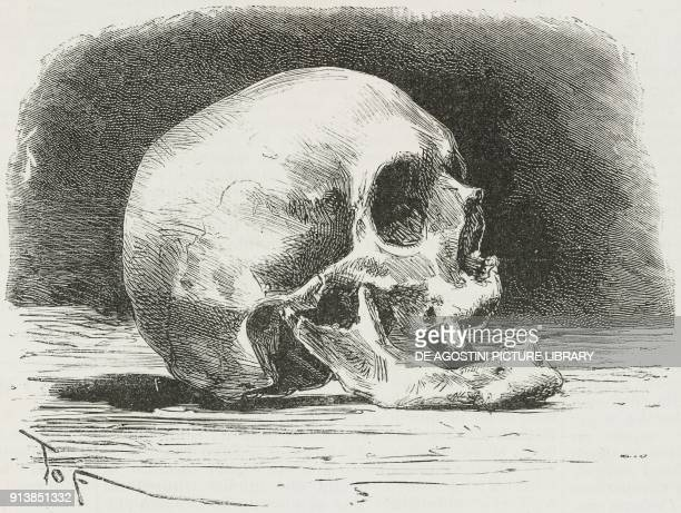 The skull of Alessandro Volta Italian chemist and physicist illustration after a photo by Giulio Reina from the magazine L'Illustrazione Universale...
