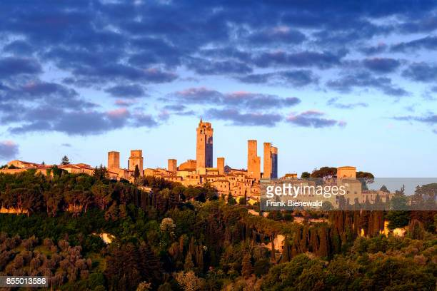 The skyline of San Gimignano, build on a hill with trees, olive orchards and vineyards.