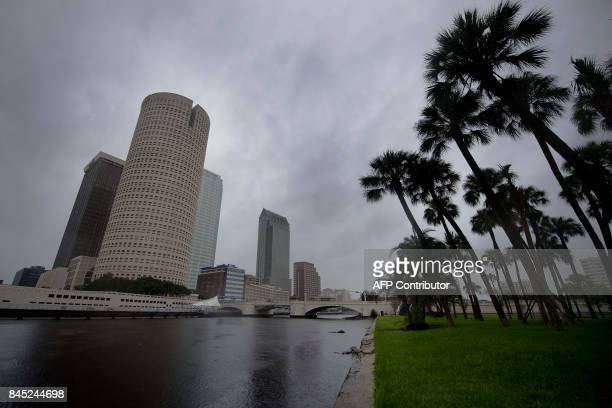 The skyline of Tampa, Florida, is seen on September 10 where Tampa residents are fleeing the evacuation zones ahead of Hurricane Irma's landfall....