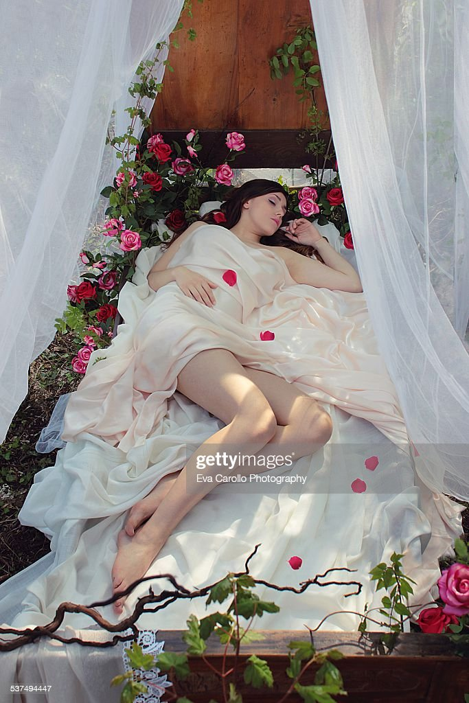 The Sleeping Beauty : Stock Photo