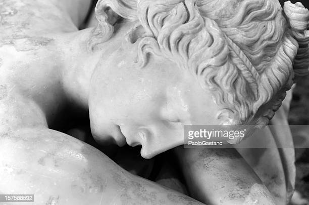 the sleeping hermaphrodite - hermaphrodite stock pictures, royalty-free photos & images