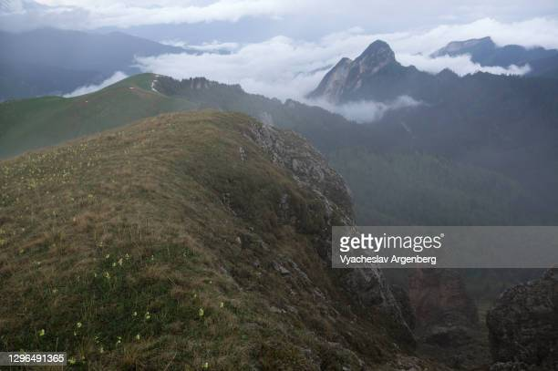 the slopes of asbestnaya mount in clouds, adygea, caucasus mountains - argenberg stock pictures, royalty-free photos & images