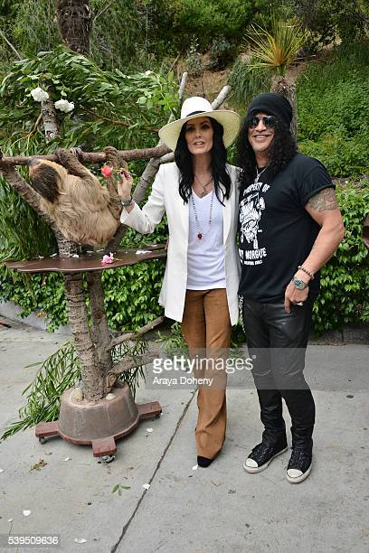 The Sloth Charlie Dalton Shenanigans Meegan Hodges and Slash attend The Greater Los Angeles Zoo Association's 46th Annual Beastly Ball at Los Angeles...