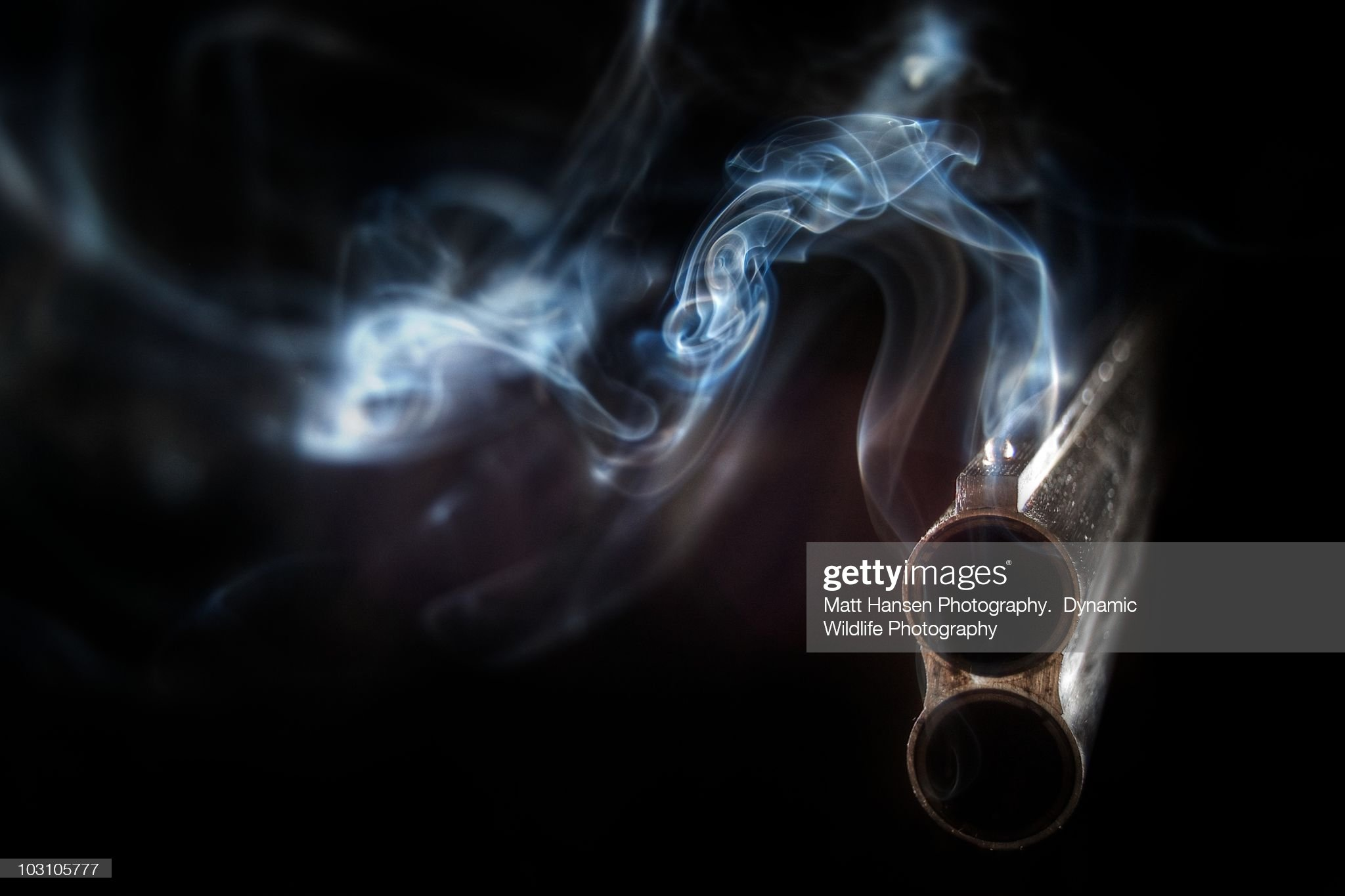 The Smoking Gun : Stock Photo