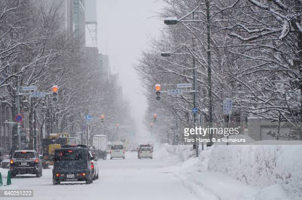 the snow city, sapporo street - sapporo japan stock pictures, royalty-free photos & images