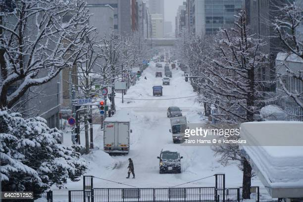 The snow city, Sapporo street