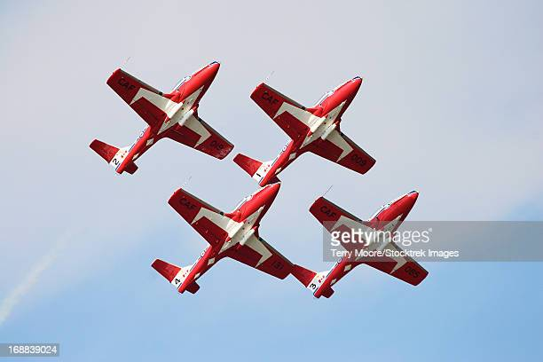 the snowbirds 431 air demonstration squadron of the royal canadian air force. - canadian snowbird stock pictures, royalty-free photos & images