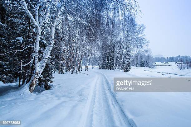 the snowscape of north village