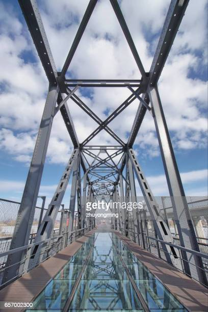 The Songhua River Binzhou railway bridge,Harbin