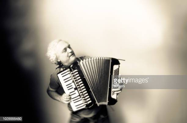 the songs of the past - accordionist stock pictures, royalty-free photos & images