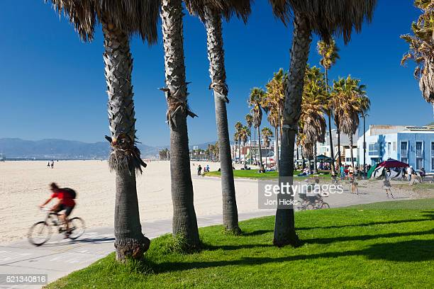 The South Bay Bicycle Trail.