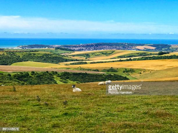 The South Downs with Brighton in the background