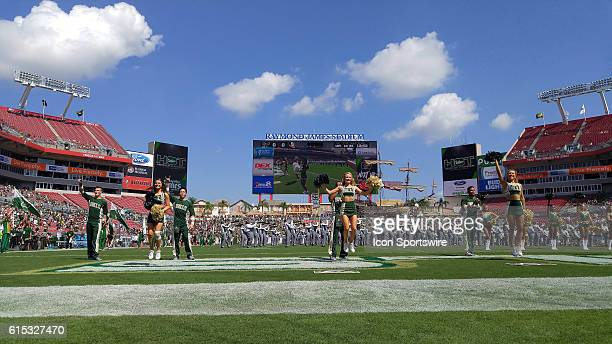 The South Florida Bulls cheerleaders entertain the fans before the game between the Florida State Seminoles and the South Florida Bulls at Raymond...