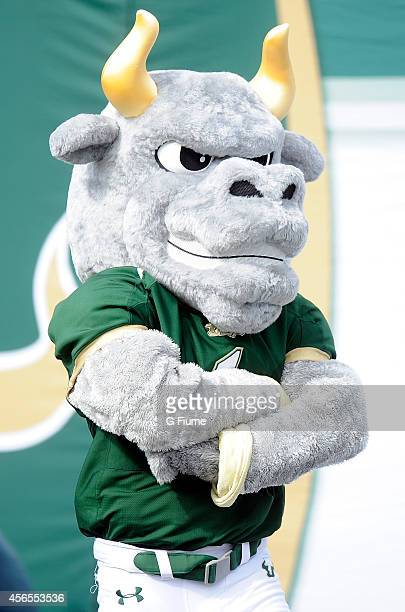 The South Florida Bulls mascot watches the game against the Maryland Terrapins at Raymond James Stadium on September 6 2014 in Tampa Florida