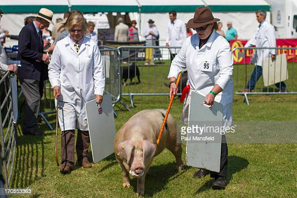 CONTENT] The South of England Show is a county show held annually at its own showground in Ardingly The show has a central agricultural theme with...