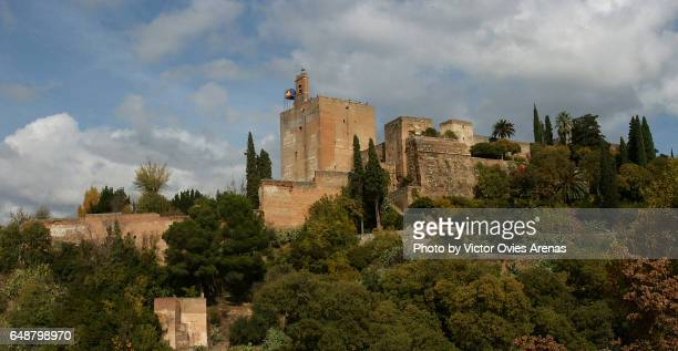 the southern face of the alcazaba and the alhambra forest from the tower bermeja viewpoint in granada, andalusia, spain - victor ovies fotografías e imágenes de stock