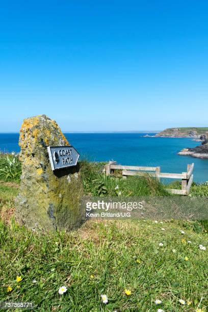 The Southwest Coast Path At Poldhu In Cornwall, England, Britain, Uk.
