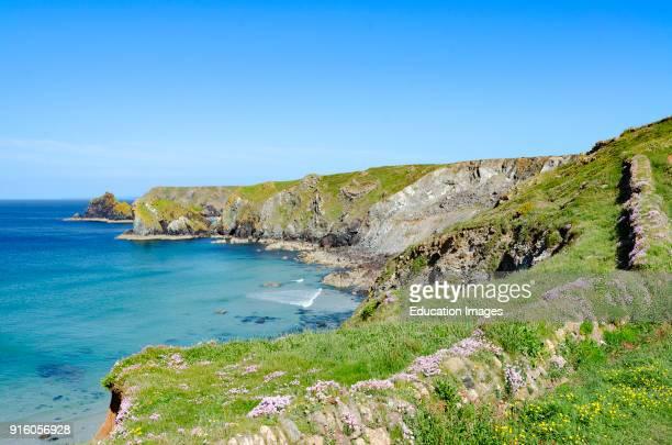 The Southwest Coastal Footpath On The Lizard Peninsular In Cornwall, England, Britain, Uk.