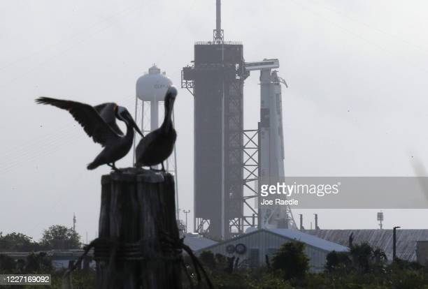 The SpaceX Falcon 9 rocket with the Crew Dragon spacecraft attached is seen as it is prepared for tomorrow's scheduled liftoff from launch pad 39A at...