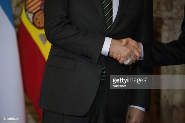 The Spanish president Mariano Rajoy shakes hands during the official greeting to the Argentine president Mauricio Macri in the White Room of the Casa...