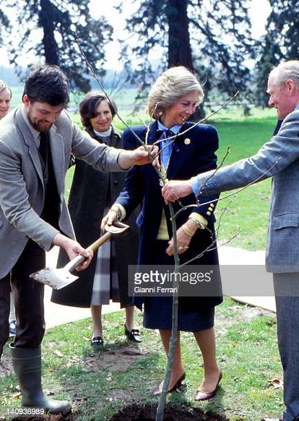 The Spanish Queen Sofia plant a tree in the gardens of the Castle of the Dukes of Wellington 24th April 1986 London England