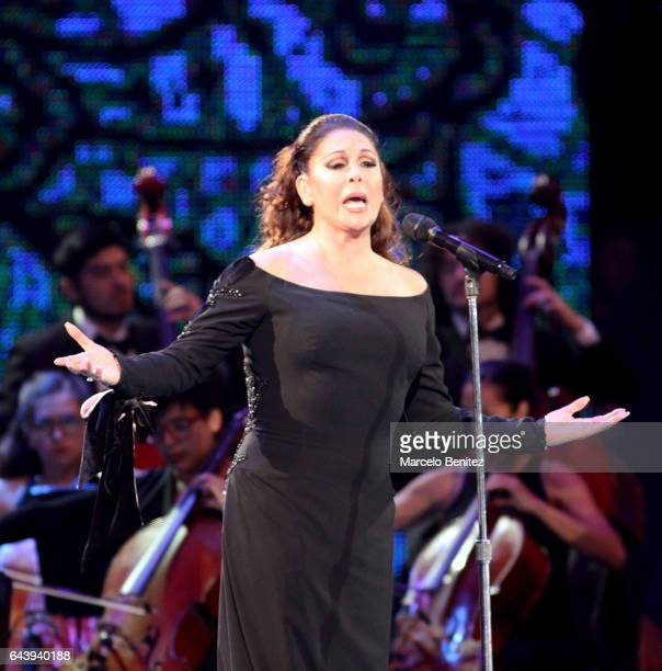 The Spanish singer Isabel Pantoja performs at the stage during 58th Viña del Mar International Song Festival at Quinta Vergara on February 22, 2017...