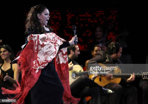 The Spanish singer Isabel Pantoja performs at the stage during 58th Viña del Mar International Song Festival at Quinta Vergara on February 22 2017 in...