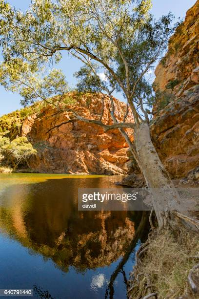the spectacular ellery creek big hole waterhole in northern territory, australia - billabong water stock photos and pictures